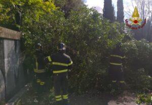 Roma: interventi per maltempo
