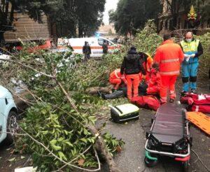 Roma: un ferito per la caduta di un albero
